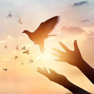 許すことで過去の出来事から解放される