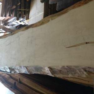 長さ6メートルを超える栃の一枚板です!