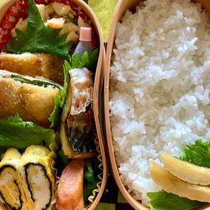 今日のお弁当 今朝は薬師丸ひろ子さんのCD