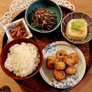 *ひよこ豆豆腐とおからの唐揚げ