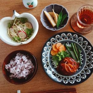 4/11*高黍のハンバーグ、たけのこと絹さやの煮物