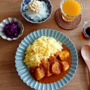 4/13*アルカレー、さらし玉葱とツナ風ひよこ豆のサラダ、紫キャベツのアチャール