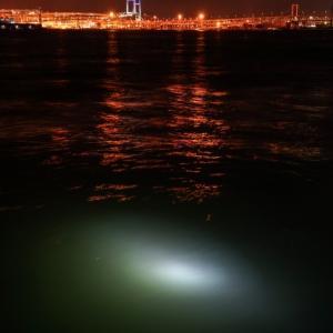 ハピソンの集魚灯の効果はいかに!アジングで投げ込み式集魚灯使ってみた。