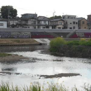 柳瀬川と新河岸川の合流地点!