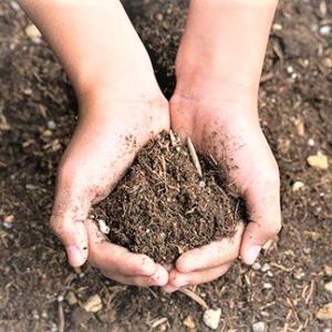 使用済みの野菜培養土の再生利用②