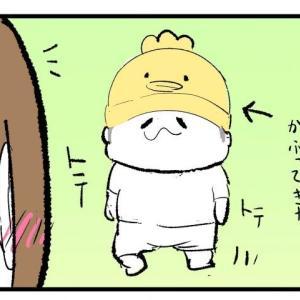気に入った鳥さんの帽子☆