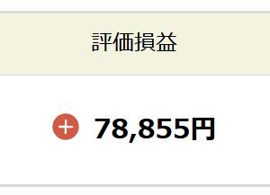 【つみたてNISA】2021年6月評価損益(ひふみ投信)