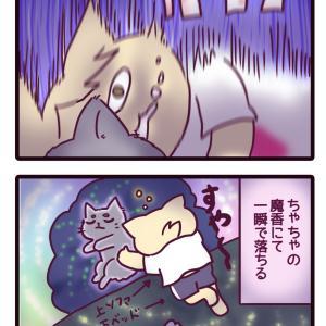 【うちの愛しにゃんこ】49話:ちゃちゃの魔香