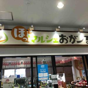 新函館北斗駅の中にある アンテナショップ 「ほっとマルシェおがーる」にてソフトクリームをキメてきました 46本/100本