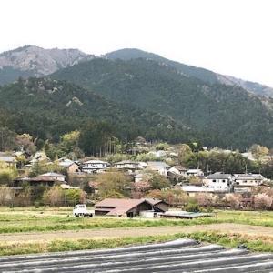 【京都大原】おススメ観光スポット!所要時間~お土産はここがおススメ!
