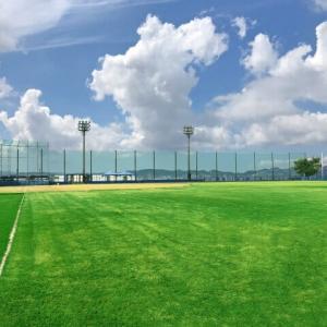 青山学院大学(青学)野球部メンバー表2021!出身高校や注目選手 一覧