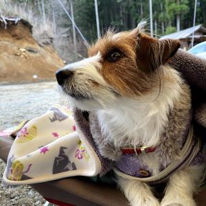 #2 日光まなかの森キャンプ&スパリゾート