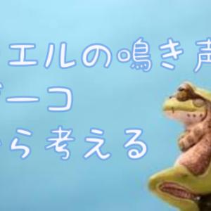 蛙のゲーコ!ゲーコ!から妄想する