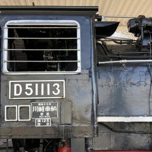 我が賃貸宅から見える桜とD51形蒸気機関車