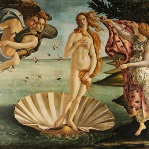 ・ シモネッタ・ヴェスプッチ ルネッサンス期の美女の原型と、死因の新研究