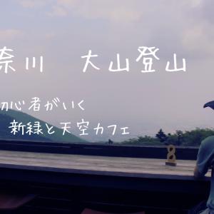 【初夏】初心者がいく!富士山への道 その2 〜神奈川県 大山にて新緑🍀と天空のカフェを楽しむ〜