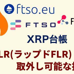 WFLR(ラップドFLR)取外し可能な投票|フレアネットワーク