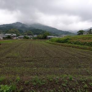 明日香村パワーいただく旅、雨天決行(1)