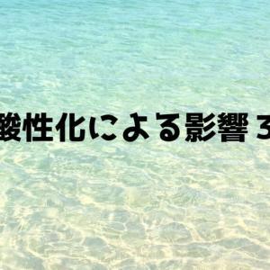【最新版】海洋酸性化による影響3選!海洋酸性化によるデメリットとは?