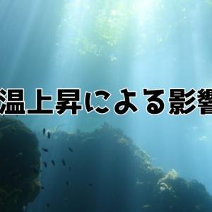 【最新版】海水温の上昇による影響3選!海水温が上昇することによるデメリットとは?