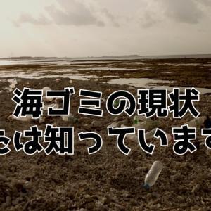 【最新版】深刻な問題である「海ゴミ」のデメリットとは?《環境と漁業に与える影響》