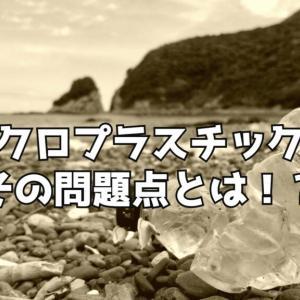 【徹底解説】マイクロプラスチックが海の生物と環境に与える影響とは!《プラスチック問題》