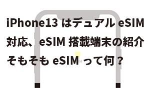 iPhone13はデュアルeSIM対応、eSIM搭載端末の紹介、そもそもeSIMって何?