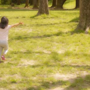 【子供が遊べる公園】さいたま市 浦和周辺の公園を比較