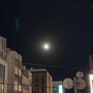 """「""""月がきれいですね""""とでも訳しておきなさい」と漱石は言った"""