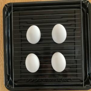 6年目のヘルシオで初ゆで卵