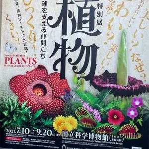特別展「植物 地球を支える仲間たち」に行ってきた!