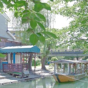 写真で見る旅~京都散策~