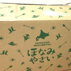 (スクロール株主優待) 北海道野菜詰め合わせ