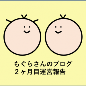 ブログ運営報告【2ヶ月目】