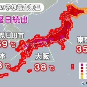 実感、命に関わるほど危険な暑さとは!