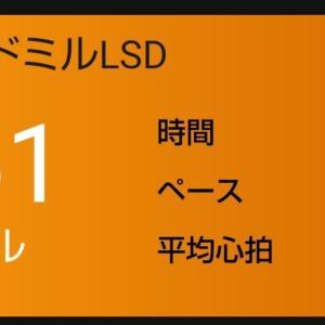 【トレッドミル】ゆっくりLSD90分で脂肪燃焼!