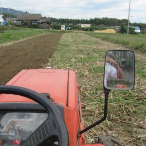 ひまわり畑の耕耘