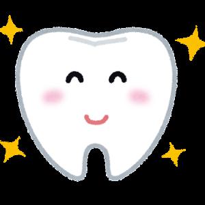 歯医者さんは予防のために行くのだ!