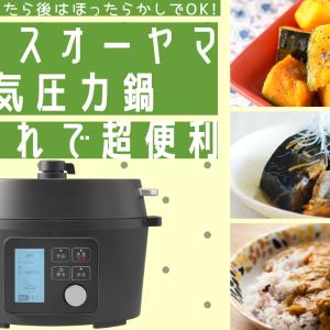アイリスオーヤマの電気圧力鍋は一人暮らしの方にもおすすめ。炊飯&お鍋も出来る!
