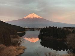 好きな風景 田貫湖からの富士山