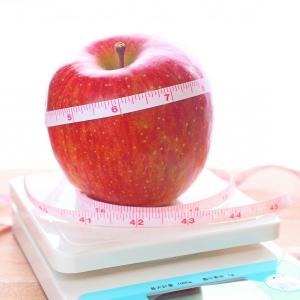 【体験レポ】DHCプロテインダイエット2ヶ月目報告~痩せる効果あり!