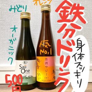 【500円】鉄分補給サジージュース比較!