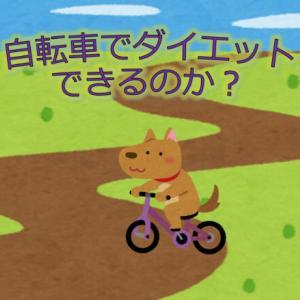 ダイエットの成功方法とは、自転車で本当に痩せれるの?