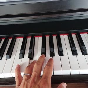 ピアノの時間(手首痛め中)