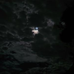 中秋の名月ランニング