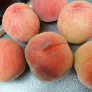 【超簡単】桃を長持ちさせる方法