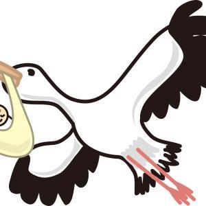 少子化打開なるか 政府がコウノトリの繁殖を促進