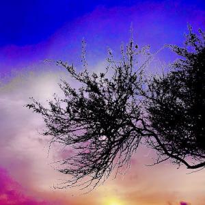 Color me Pretty空景いろいろ~♡~4.03