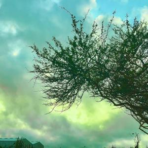 お天道様と雲景色…~♡~4.16
