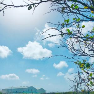 太陽と青い空です〜♡~05.20
